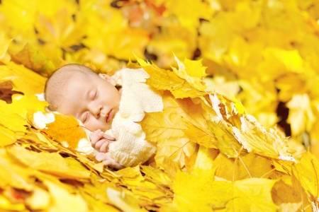 15007259-otoño-dormir-recién-nacido-en-las-hojas-de-arce-close-up-retrato